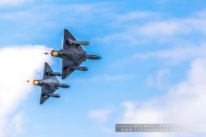 2018 06 Mirage2000D -Couteau Delta- (185)